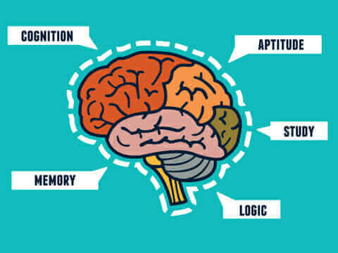 A photo showing key words related to whole brain thinking